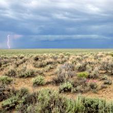 Photo of expansive sagebrush landscape